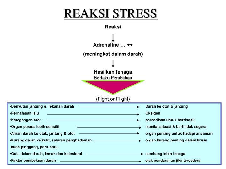 REAKSI STRESS
