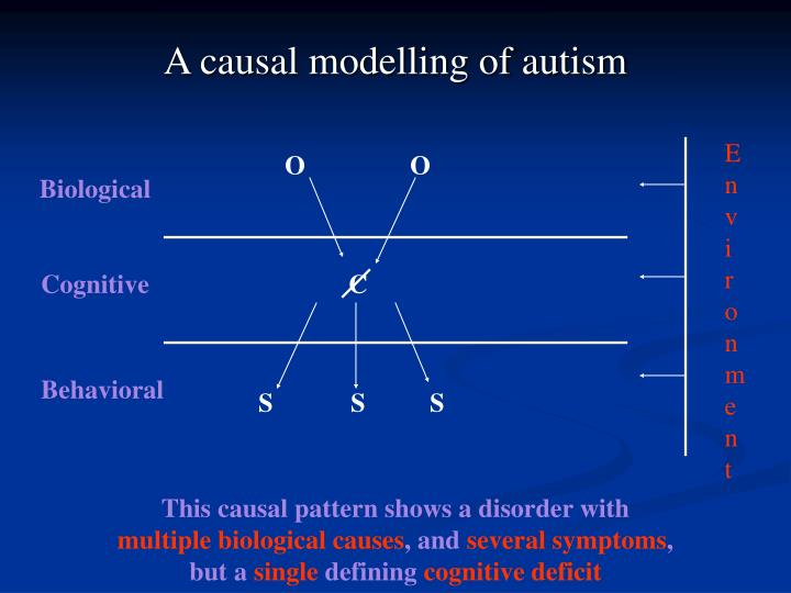 A causal modelling of autism