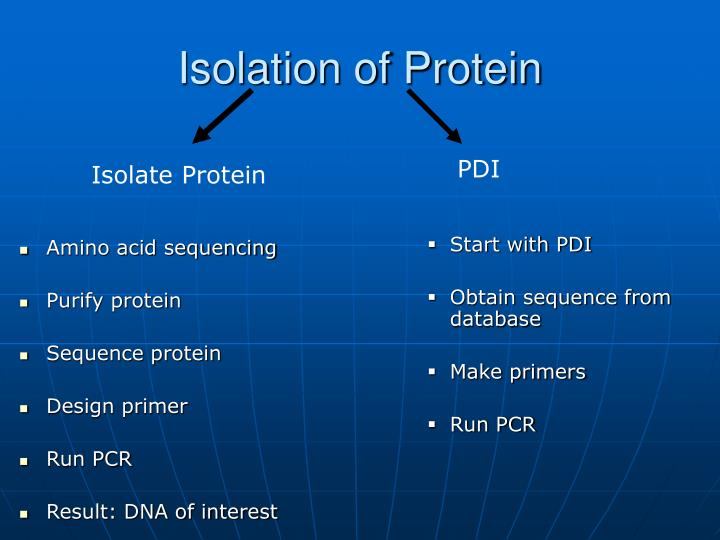 Isolation of Protein