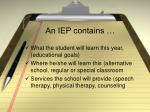an iep contains