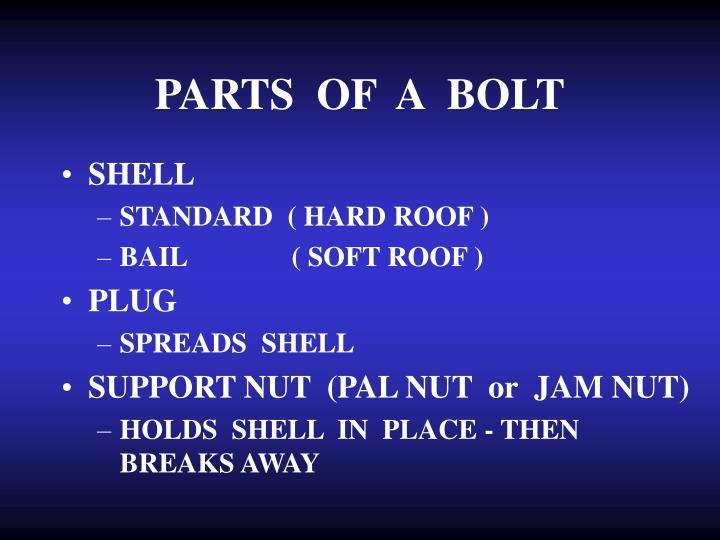 PARTS  OF  A  BOLT