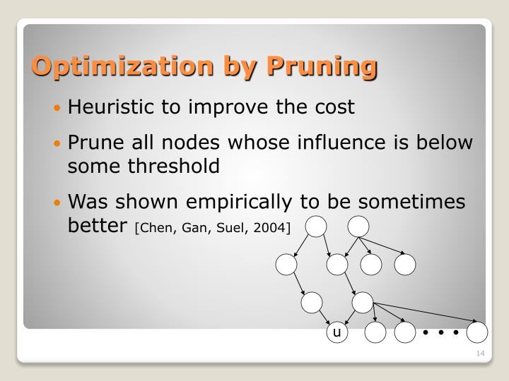 Optimization by Pruning