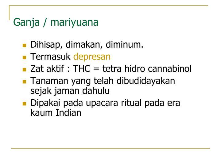 Ganja / mariyuana