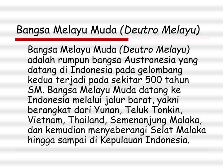 Bangsa Melayu Muda