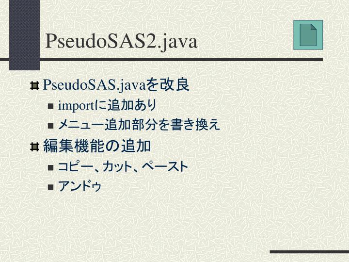 PseudoSAS2.java