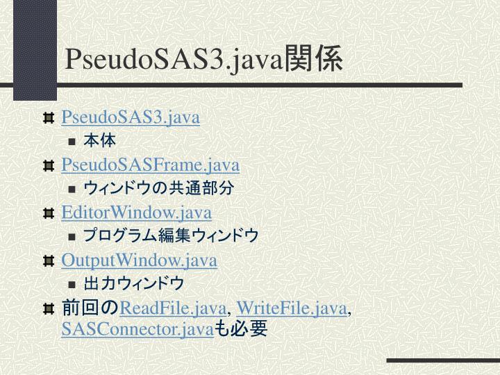 PseudoSAS3.java