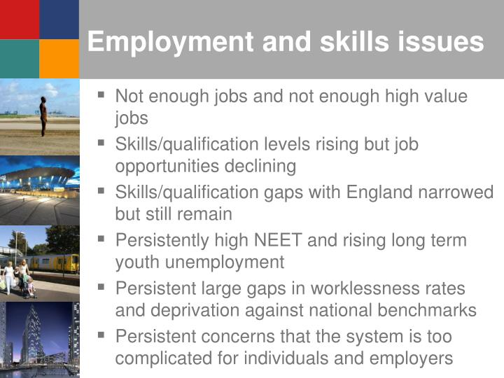 Employment and skills issues