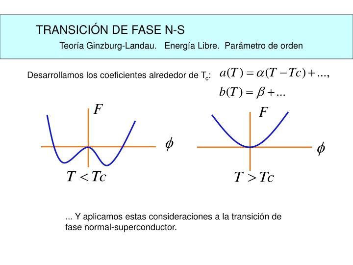 TRANSICIÓN DE FASE N-S