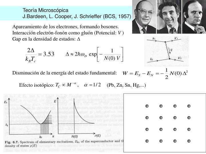 Teoría Microscópica