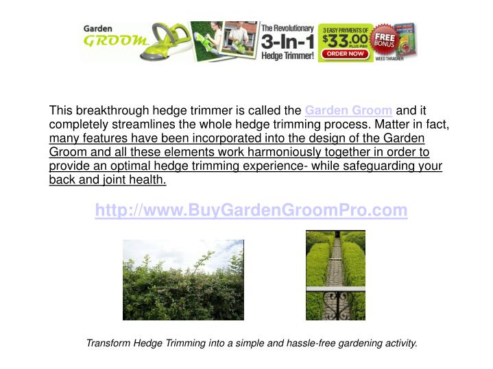 This breakthrough hedge trimmer is called the
