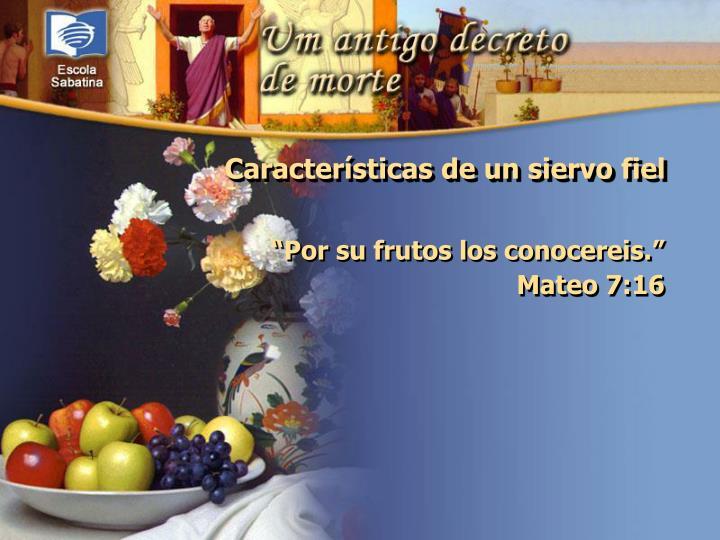 """""""Por su frutos los conocereis.""""                 Mateo 7:16"""