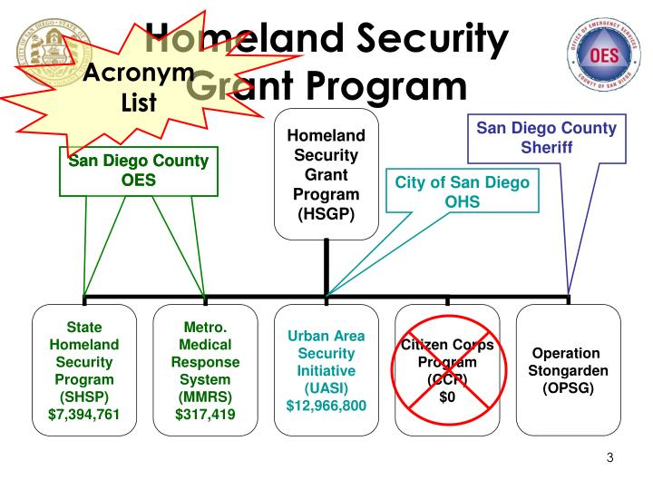 Homeland security grant program