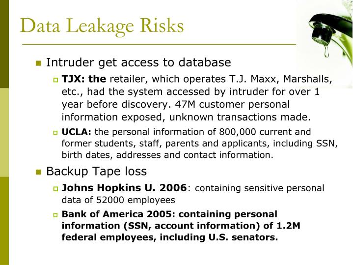 Data Leakage Risks