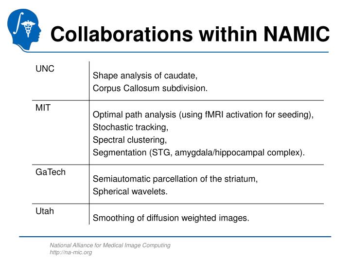 Collaborations within NAMIC