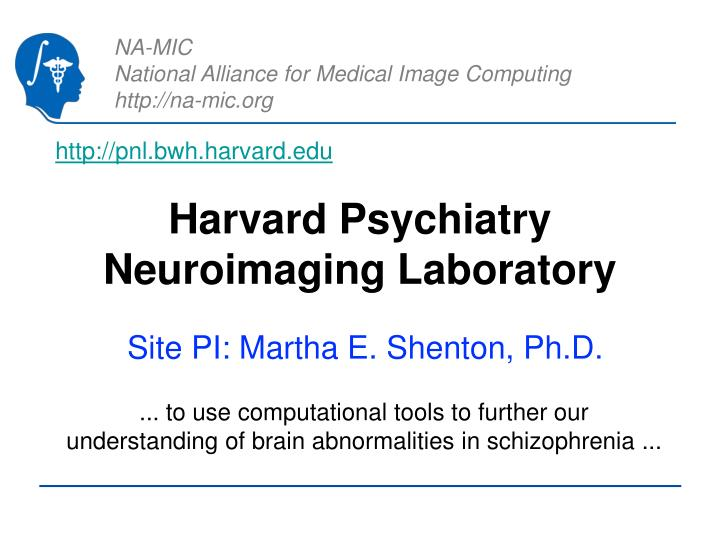 Harvard psychiatry neuroimaging laboratory