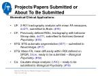 projects papers submitted or about to be submitted