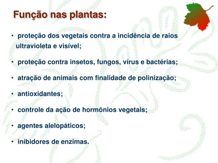 Função nas plantas: