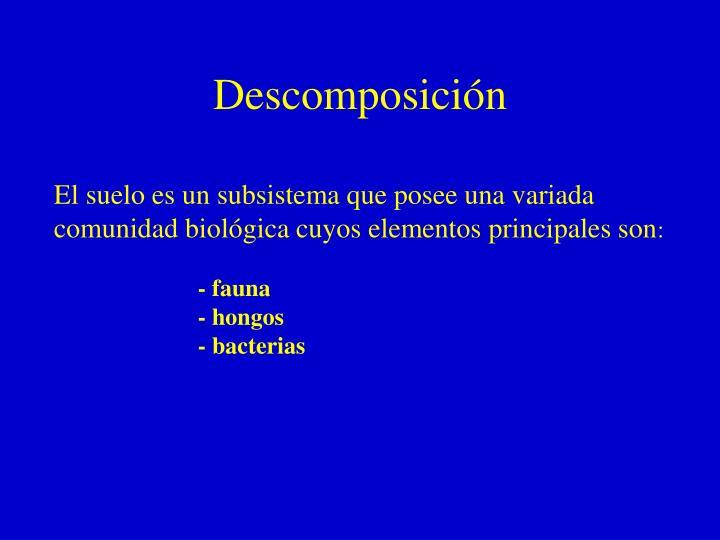 Descomposición
