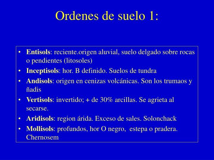 Ordenes de suelo 1: