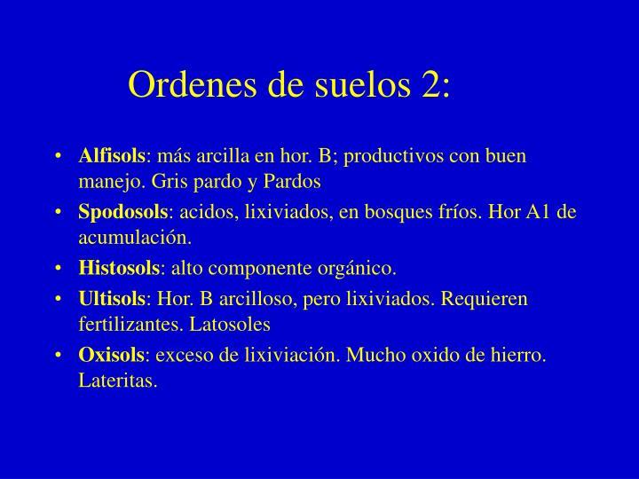 Ordenes de suelos 2: