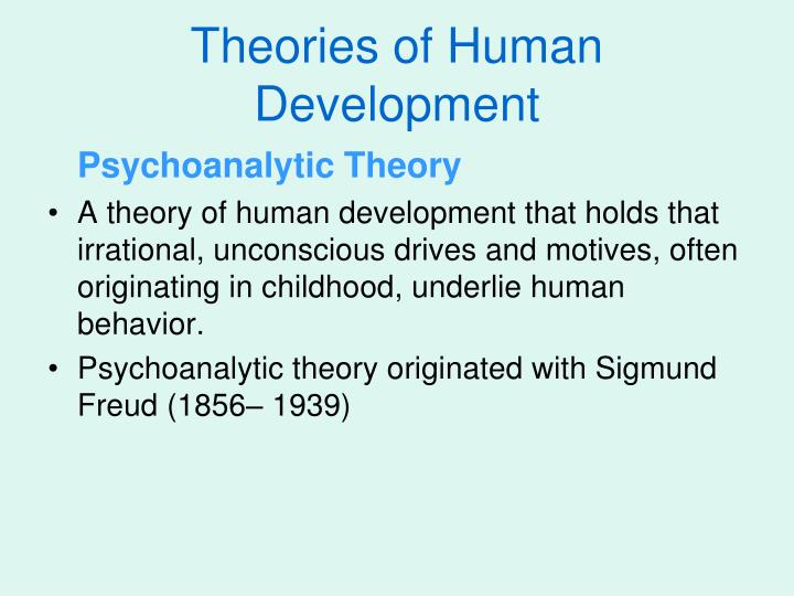 theory of human development essay Human development exam essay questions use ecological systems theory to explain growth or change in 2 of the domains (growth and physical development.
