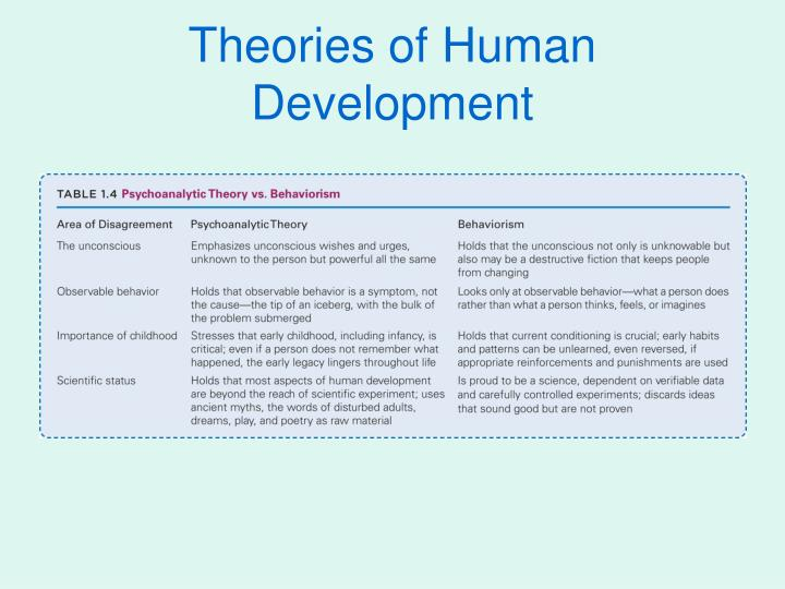 theory of human development essay