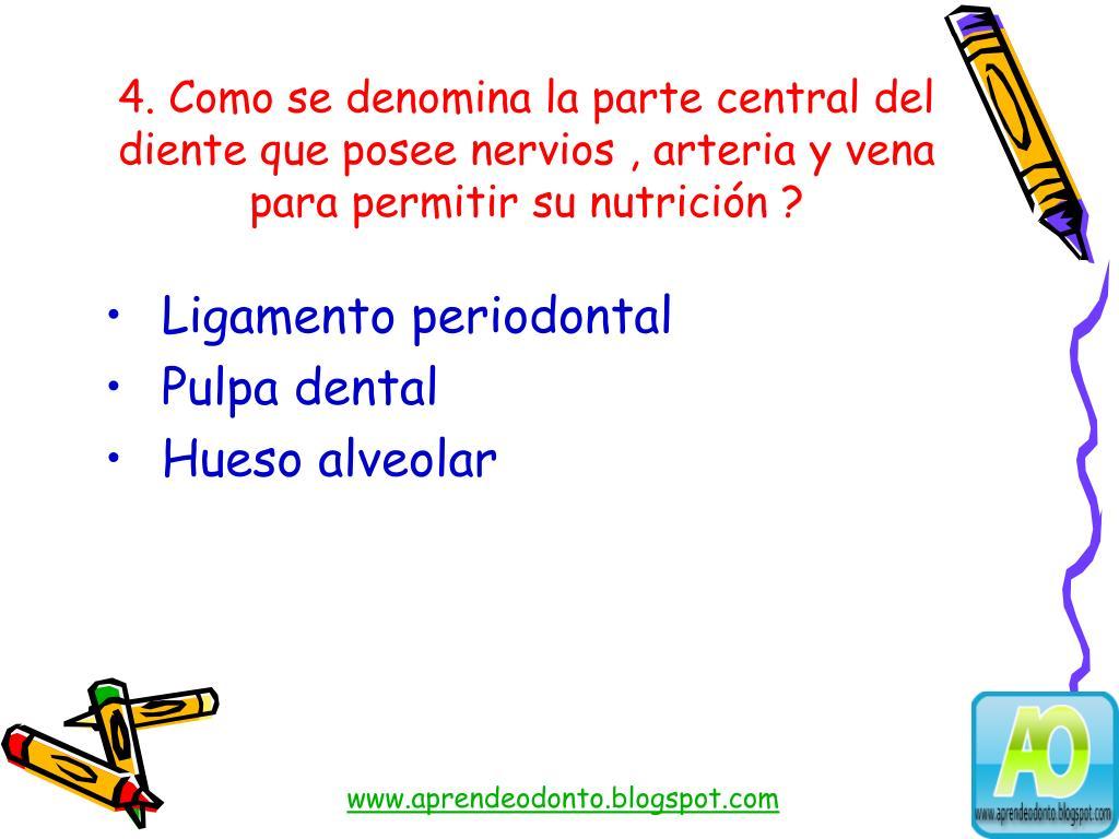 4. Como se denomina la parte central del diente que posee nervios , arteria y vena para permitir su nutrición ?