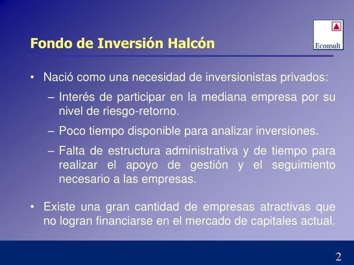 Fondo de Inversión Halcón