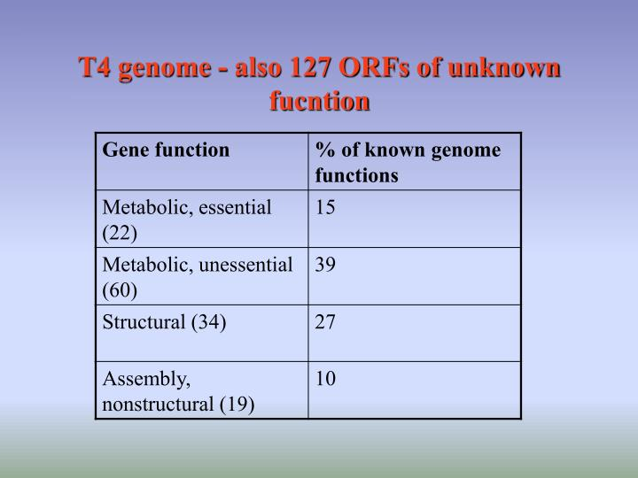 T4 genome - also 127 ORFs of unknown fucntion