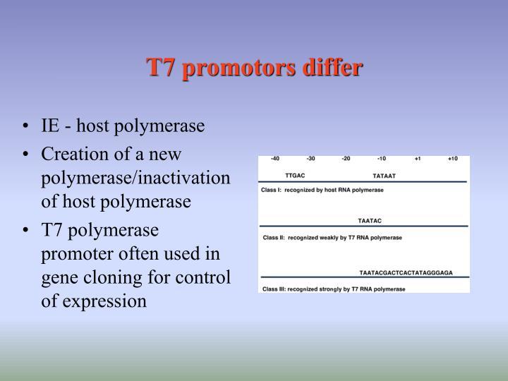 T7 promotors differ