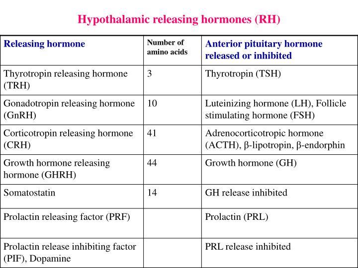 Hypothalamic releasing hormones (RH)