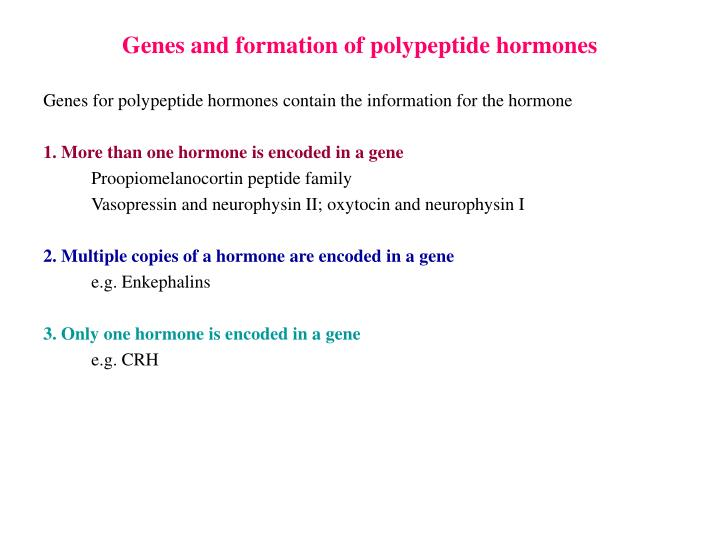 Genes and formation of polypeptide hormones