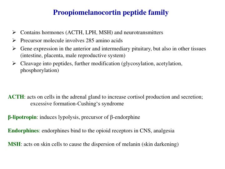 Proopiomelanocortin peptide family