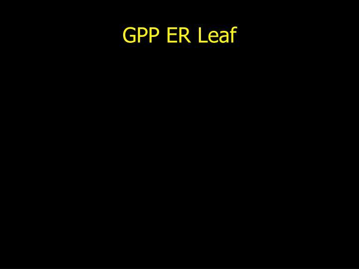 GPP ER Leaf