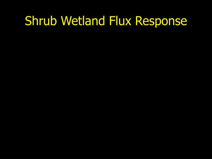 Shrub Wetland Flux Response