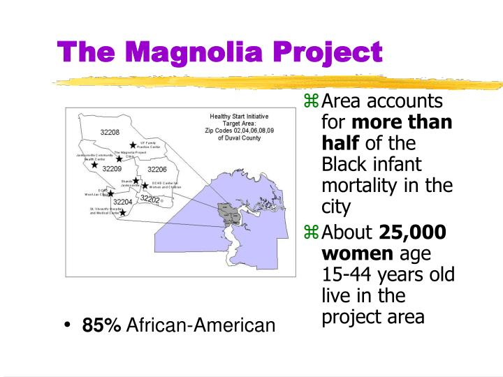 The Magnolia Project