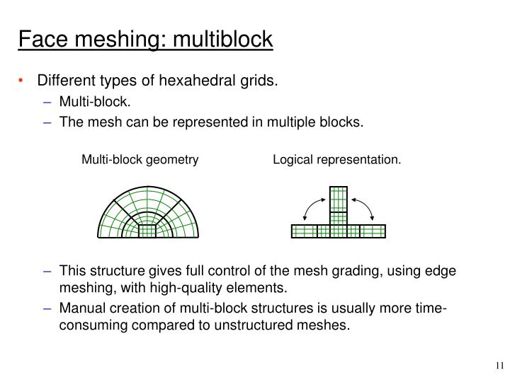 Face meshing: multiblock