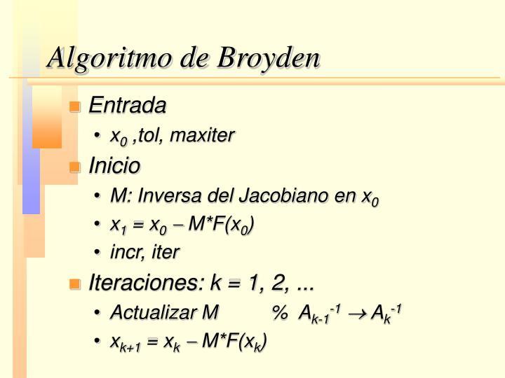 Algoritmo de Broyden