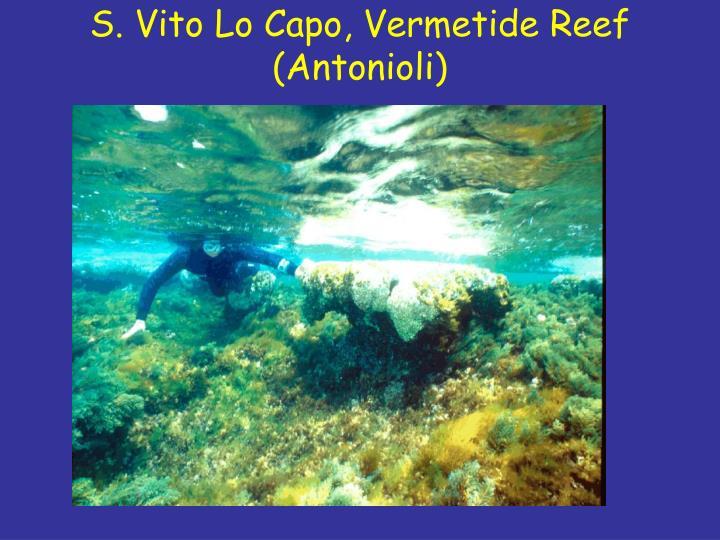 S. Vito Lo Capo, Vermetide Reef