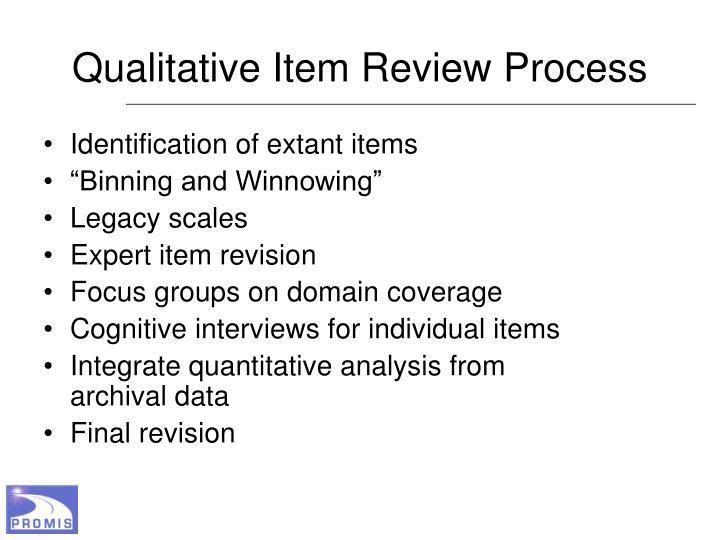 Qualitative Item Review Process