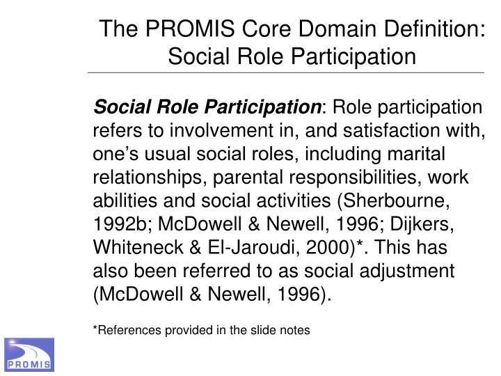The PROMIS Core Domain Definition: Social Role Participation