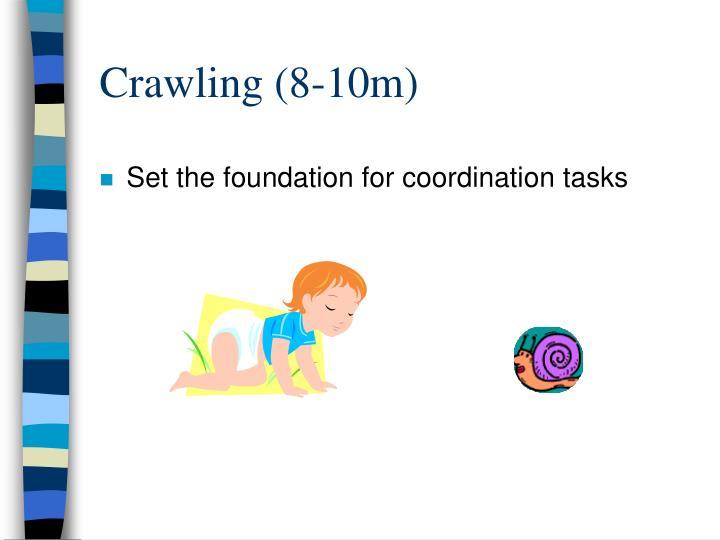 Crawling (8-10m)