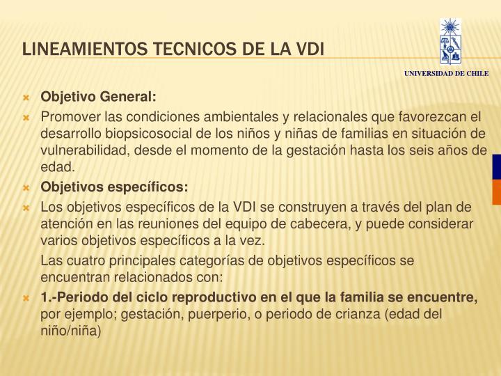LINEAMIENTOS TECNICOS DE LA VDI
