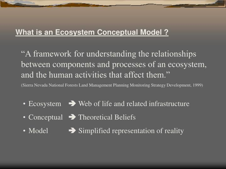 What is an Ecosystem Conceptual Model ?