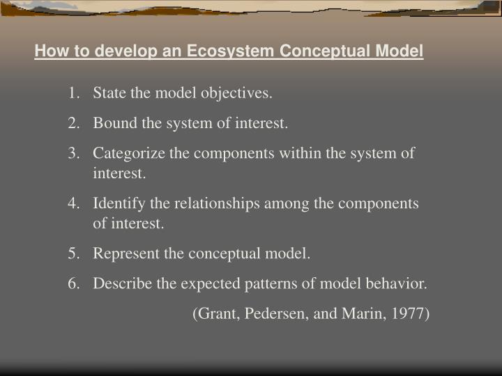 How to develop an Ecosystem Conceptual Model