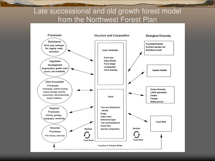 Late successional and old growth forest model from the Northwest Forest Plan
