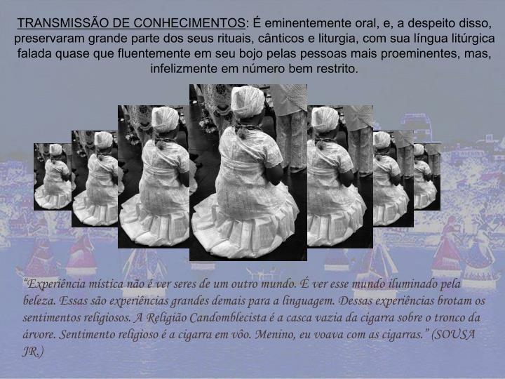 TRANSMISSÃO DE CONHECIMENTOS