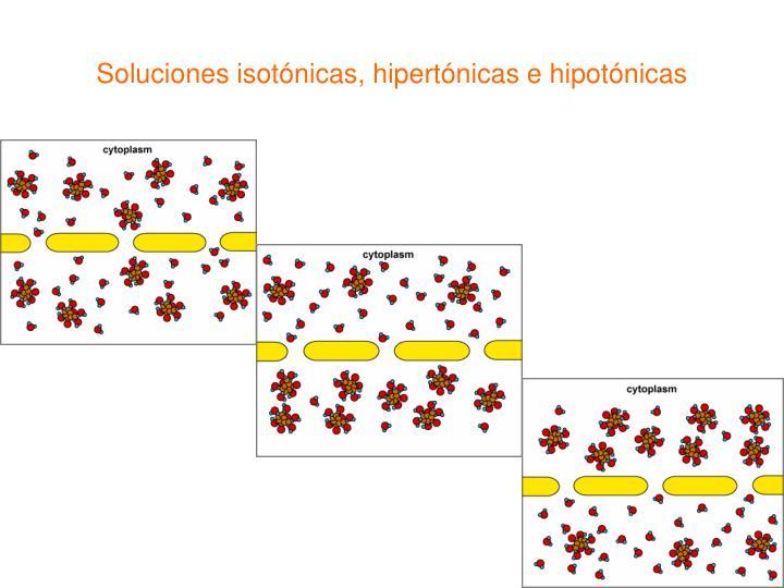 Soluciones isotónicas, hipertónicas e hipotónicas