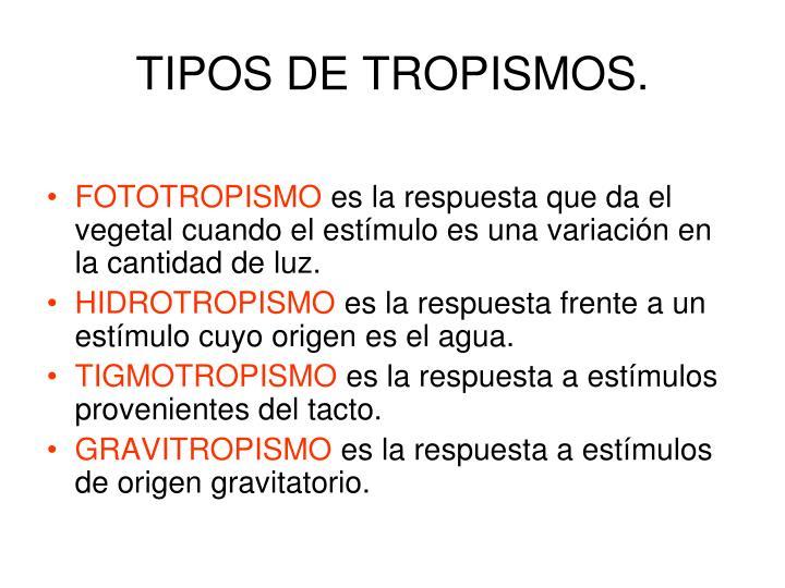 TIPOS DE TROPISMOS.
