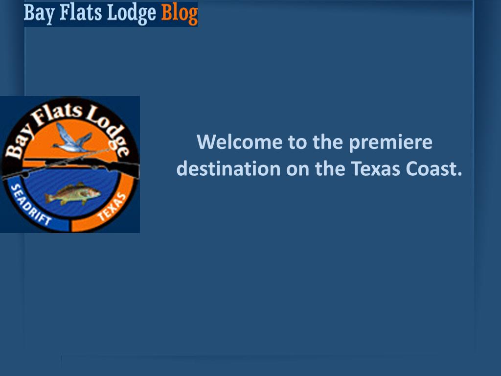 Welcome to the premiere destination on the Texas Coast.